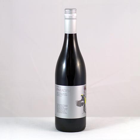 Birds of Paradise Yarra Valley Pinot Noir 2010
